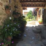 I Glicini,  Torgiano