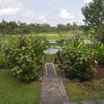 Puri Puncak Bukit Villa, Ubud