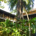 Punta Rica,  Bastimentos