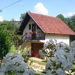 Guesthouse Ana, Mokra Gora