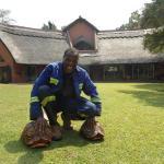 Rushando, Harare