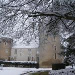 Hotel Pictures: Château de Bouesse, Bouesse