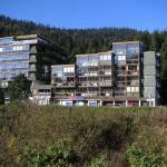 Résidence Le Chitelet - Belle Hutte, La Bresse