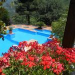 Agriturismo La Casa Del Ghiro, Pimonte