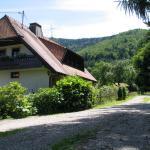 Hotel Pictures: Haus Brigitte, Horben
