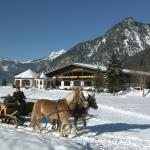 Hotel Pictures: Gut Hanneshof, Erpfendorf