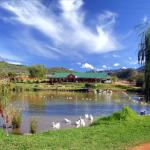 Wilgewandel Holiday Farm & Day Restaurant, Oudtshoorn