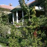 Guesthouse Stanisavljevic, Negotin