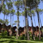 ホテル写真: Refugio del Bosque, Carilo
