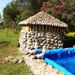 Hotel Pictures: Agar Lodge, Bahir Dar
