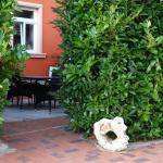Hotel Pictures: Deutsches Haus Apartments, Lohme