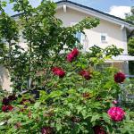 Hotel Pictures: Stadtoase-Potsdam Wohnung mit 2 Schlafzimmer, Potsdam