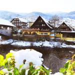 Hotel Pictures: Das Waldhaus, Forbach