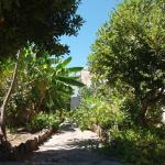 Mentousi Rooms To Let, Skala Kallonis
