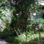 Home Rental villa 3 chambres bord de mer,  Cannes