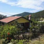 Yellow House,  Budva