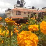 Green View Rest House,  Coonoor
