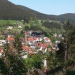 Hotel Pictures: Haus am Wald, Baiersbronn
