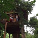 INN On The Tree,  Sigiriya