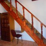 Kozo Lodge Livingstone,  Livingstone