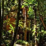 Bambu Floripa Hostel, Florianópolis