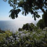 Rental Villa Villa Crete Haute, Cavalaire-sur-Mer