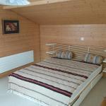Hotel Pictures: Ferienhaus Mänimatte, Frutigen