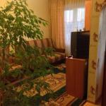 Apartments on Gorkogo 5, Gatchina