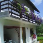 Guest House Milan, Vrelo Koreničko
