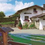 Hotel Pictures: Haus Schubert, Rittsteig