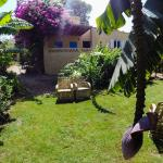 Hotel Pictures: Coco Villa, Fayoum