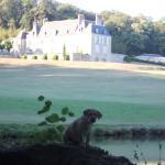 Hotel Pictures: Château d'Hodebert, Saint-Paterne-Racan