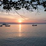 Polaris Beach and Dive Resort Inc, Loon