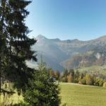 Hotel Pictures: Chalet le Pre-Charvin, Crest-Voland