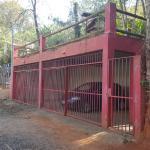 Hotel Pictures: Refúgio da Mata, Macacos
