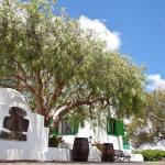Casa Malvasia - La Geria, Masdache
