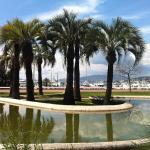 Palm Beach Croisette, Cannes