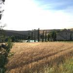 La Tana del Bianconiglio, Castiglione d'Orcia