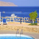 Sharks Bay - Beachfront Elite Apartment, Sharm El Sheikh