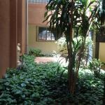 Foto Hotel: La Rose des Sables, Ouagadougou