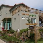 Tamarisk Guesthouse, Jeju