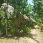 Clarissa Falls Resort, San Ignacio