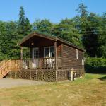 Seaside Camping Resort One-Bedroom Cabin 6, Seaside