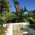 Fotos de l'hotel: Sunshine Coast Tropical Getaway, Buderim