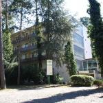 Hotel Pictures: Waldhotel zum Taunus, Budenheim