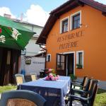Hotel Pictures: Penzion U Strnada, Klatovy
