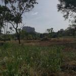 Oshani Homestay Sigiriya,  Sigiriya