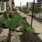 Hotel Pictures: Parinacota II, Arica