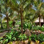 Mandala Eco Villas, La Libertad