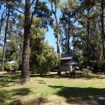 Altos del Bosque, Mar del Plata